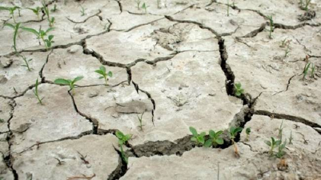 España entrega a Cuba un análisis sobre los efectos del cambio climático en la costa de la isla