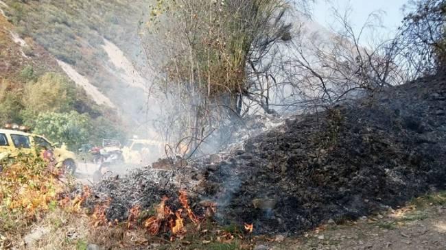 La Comisión Europea nos confirma que va investigar porque reciben ayudas de las PAC las superficies quemadas en Asturias