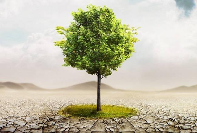 El Gobierno anuncia que aprobará la Ley de Cambio Climático este mes