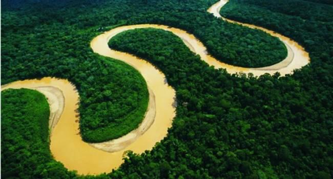 Los brasileños desean estar más cerca de la naturaleza pero creen que no se la cuida lo suficiente