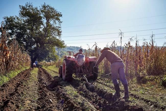 La agricultura mundial dispone de un nuevo instrumento para la adaptación efectiva al cambio climático