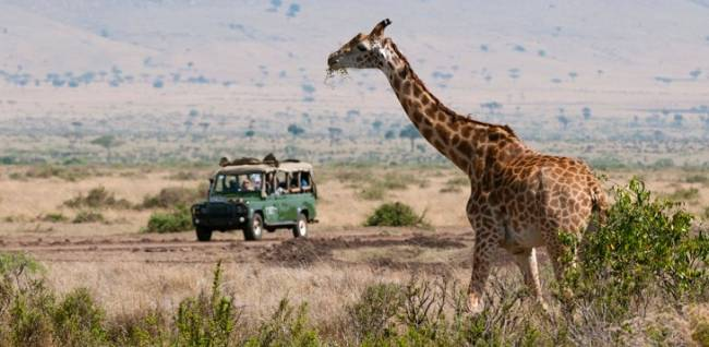 El turismo en África preserva la biodiversidad