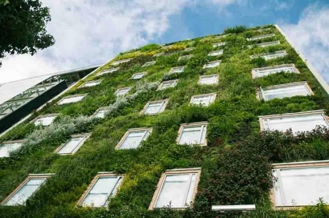 Tecnología verde para reducir la temperatura de los edificios y limpiar la contaminación