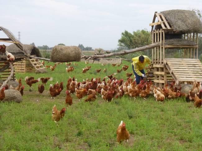 Cantabria apuesta fuerte por la producción ecológica
