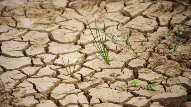 El Consell de Mallorca luchará contra el cambio climático