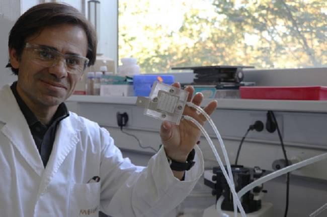 Tecnología verde transforma el CO2 en biocombustible