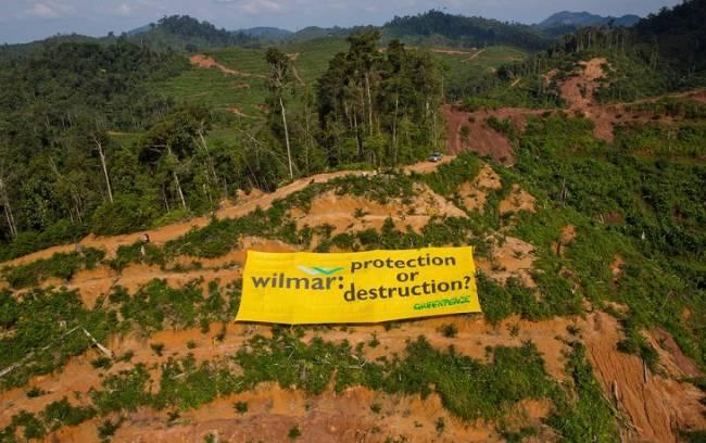 Un escándalo  más con el insostenible aceite de palma