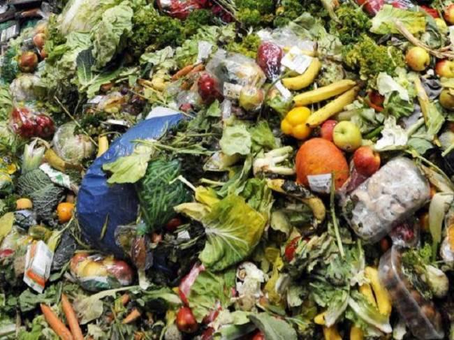¿Cuántos alimentos se desperdician en el norte de México?
