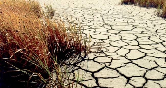 La Amazonia se expone a más calentamiento y sequías prolongadas