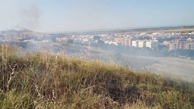 Un nuevo incendio en el Carambolo quema buena parte de los árboles supervivientes de la reforestación