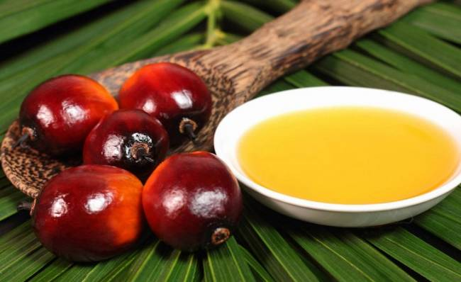 La sociedad 'rechaza de plano' el aceite de palma