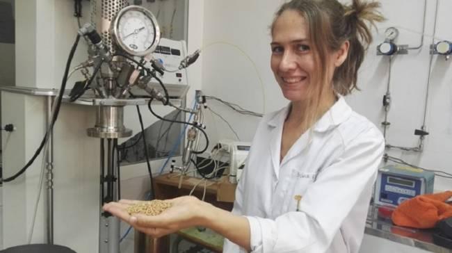 Tecnología verde: Cáscaras de pistacho para limpiar el agua