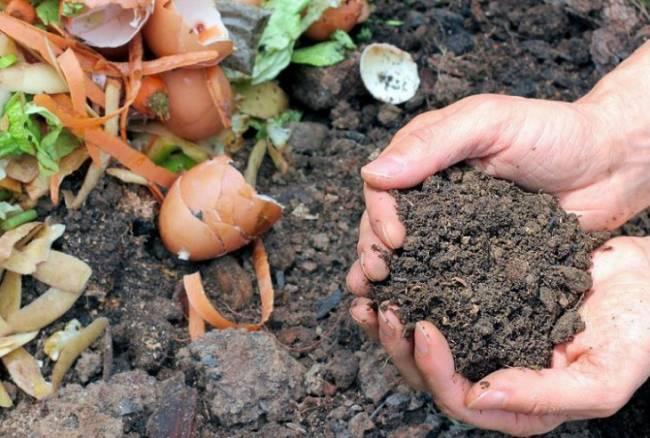 Aragón. Proyecto 'Cero residuos' para promover el compostaje