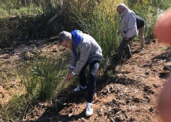 Gesa Mediación se suma a la protección medioambiental con la iniciativa 'Planta un bosque' de AEMA