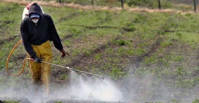 Formaliza Gobierno Federal integración de Grupo Intersecretarial para Regulación sobre Plaguicidas
