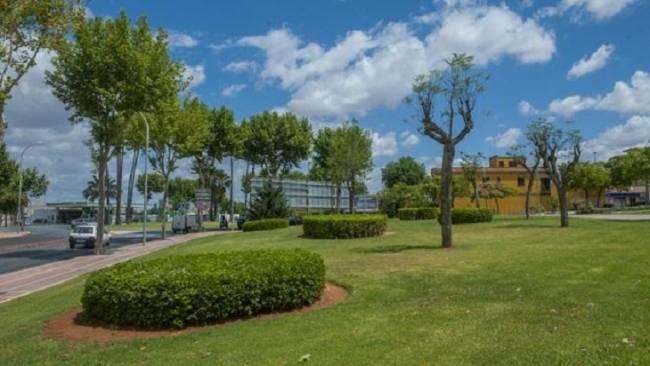 El nuevo contrato de zonas verdes en Sevilla arranca el 1 de marzo, con 7.000 nuevos árboles