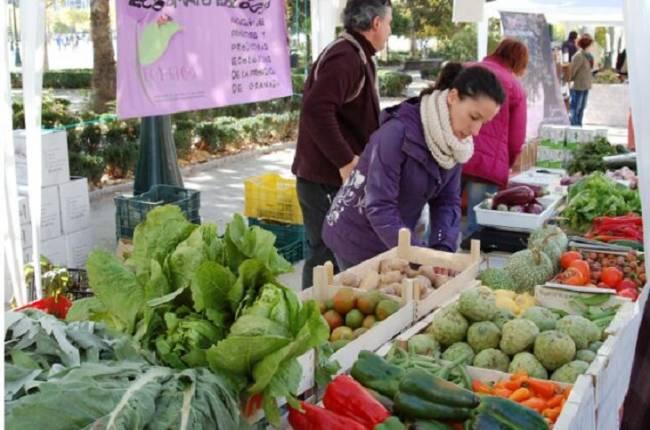 El patio de la Casa del Niño Jesús acoge este sábado una nueva sesión de Ecomercado en Cádiz
