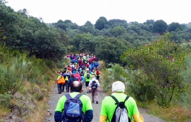 Mejoras en varios senderos de Sierra Morena