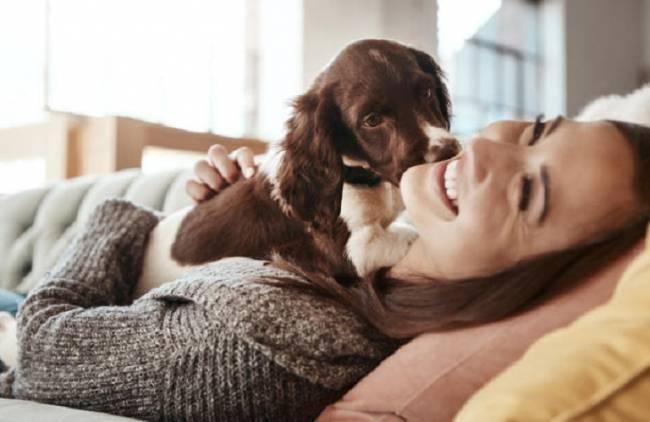 El 86% de los cuidadores de mascotas en España son mujeres