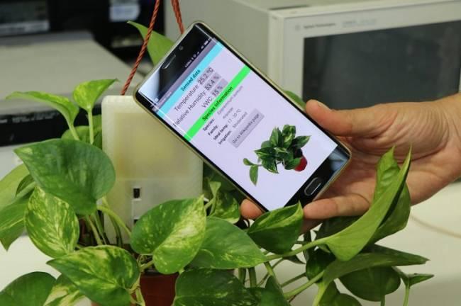 Tecnología verde en un sensor que se alimenta de la energía de los móviles