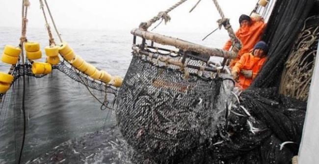 La sobrepesca que esconde Europa