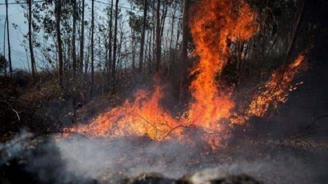 Incendios y calidad del aire en Cantabria