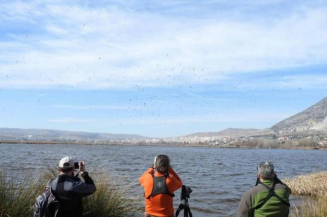 Doñana Natural Life en 'referente' del ecoturismo en España