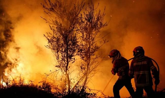 El año 2018 será un referente por los escasos incendios forestales en España