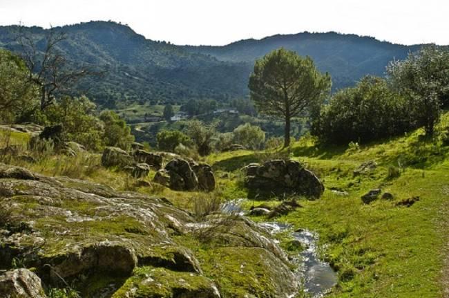 Otoño romero, otoño de responsabilidad ambiental