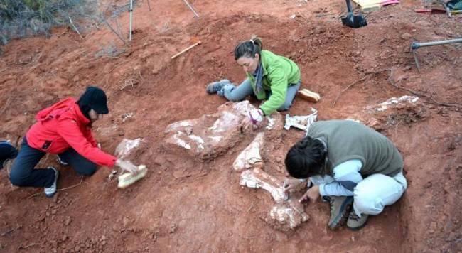 Aparece en Argentina la dinosauria gigante más antigua